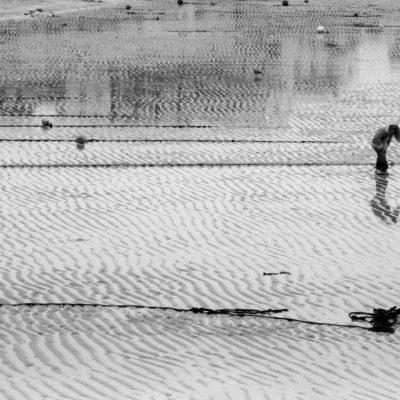 """St. Ives 2003. Un alito di musica o di sogno, qualcosa che faccia quasi sentire, qualcosa che non faccia pensare. Da """"Il libro dell'inquietudine"""" - Fernando Pessoa."""